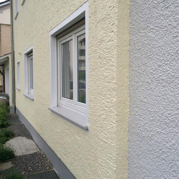 Unsere Top-Fassadenfarbe hat einen Käfer als Vorbild